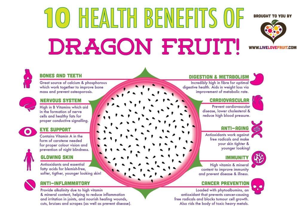 dragonfruitinfo.jpg